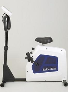 エクスケアバイク RG-EM300